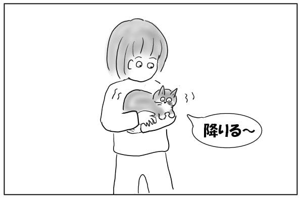 猫をだっこする