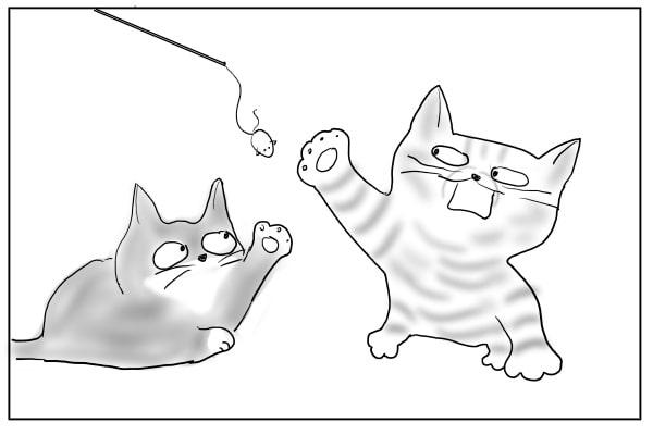 手抜きする猫