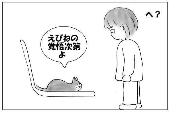 条件をつける猫