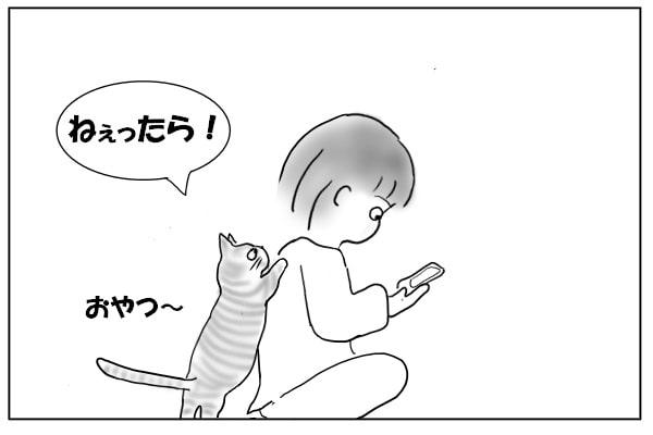 背中をバリバリする猫