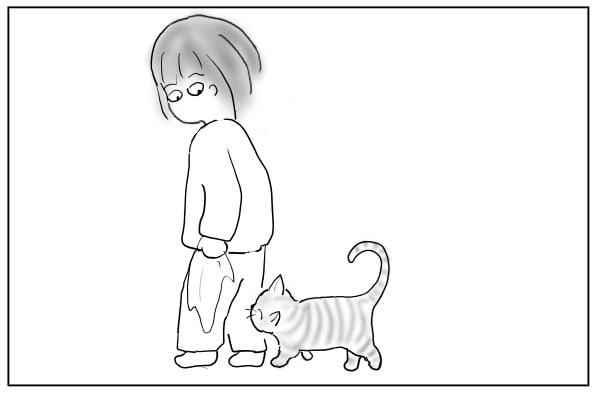 足りない猫