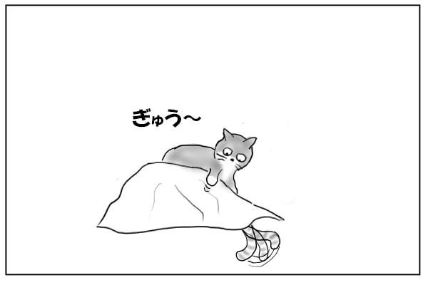 仲間を踏む猫