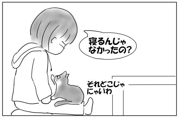 パーカーの紐と猫