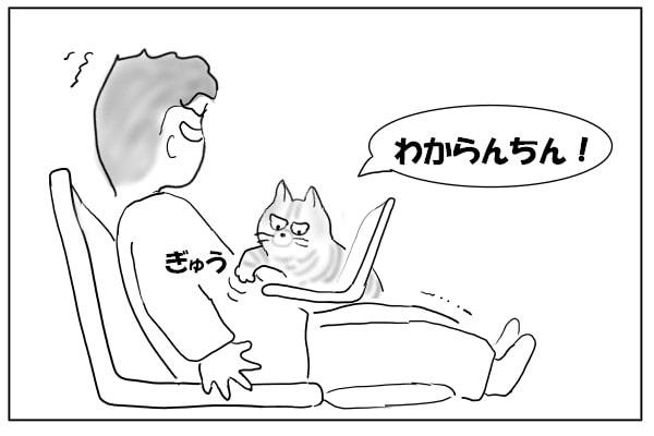 みぞおちを押す猫