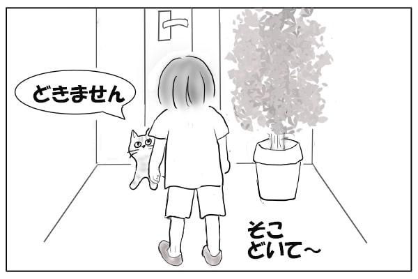 通せんぼする猫