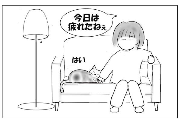 猫とソファで