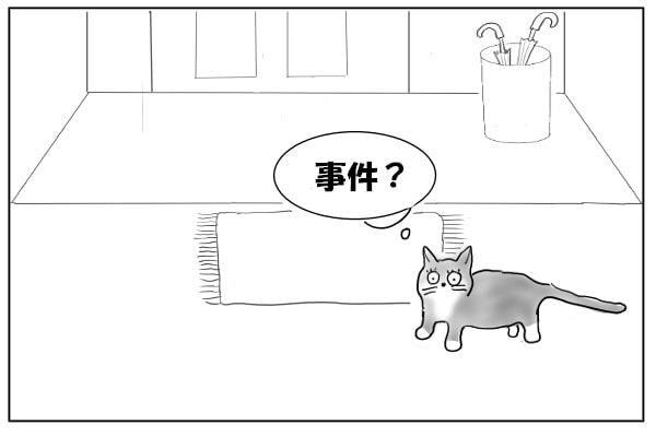聞きつけた猫