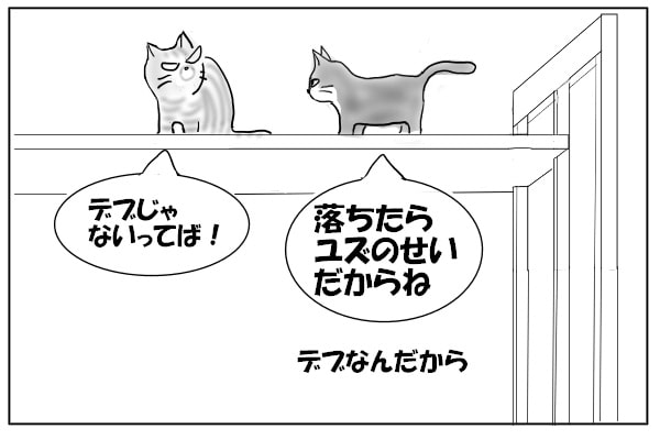 捨て台詞を吐く猫
