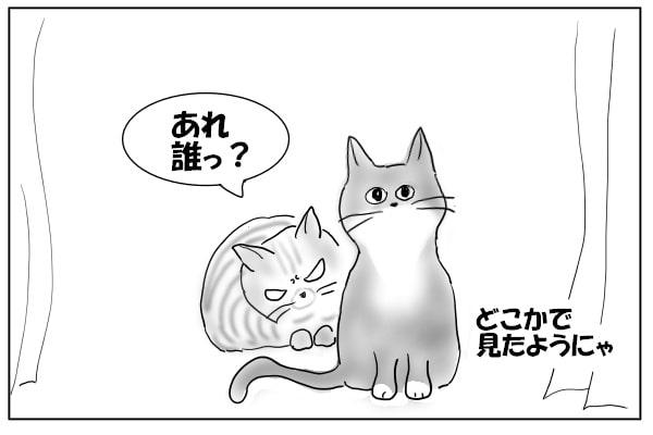 陰に隠れる猫