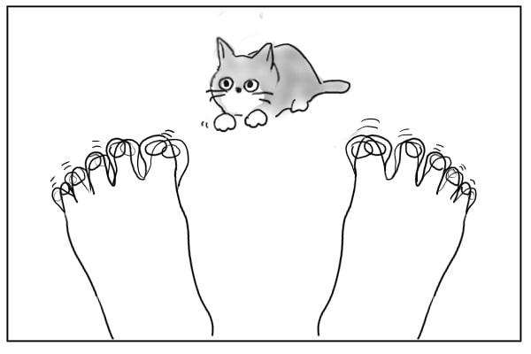 匍匐前進の猫