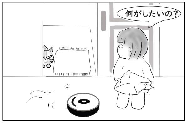じとっと監視する猫