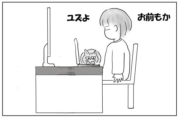 仕事を妨害する猫