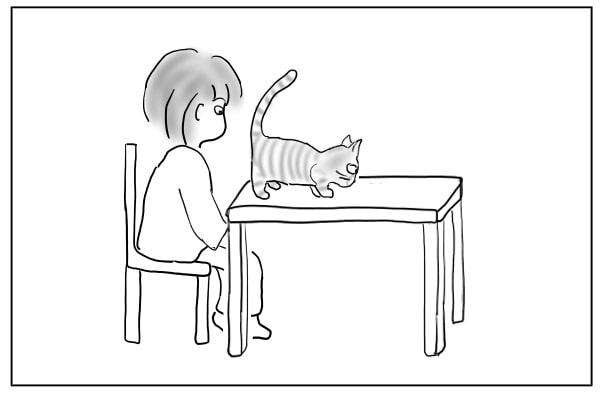 目の前に猫のお尻