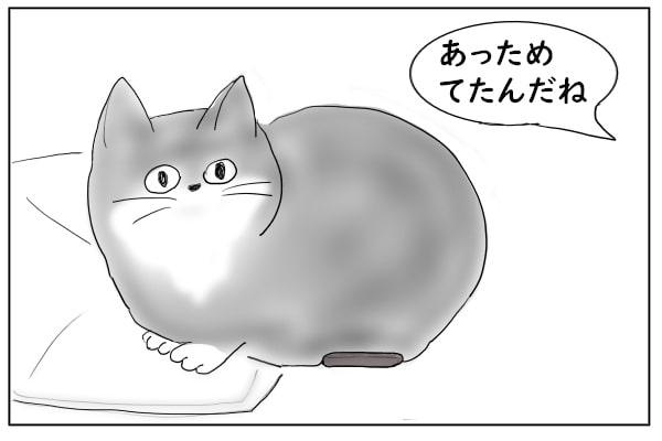 猫の下にリモコン