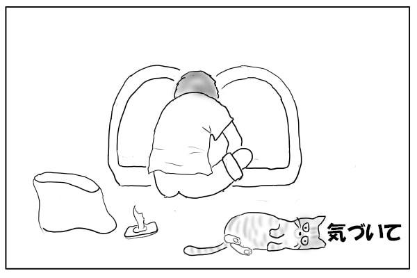 ゴロンと寝る猫