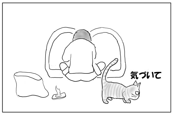 気づいてほしい猫