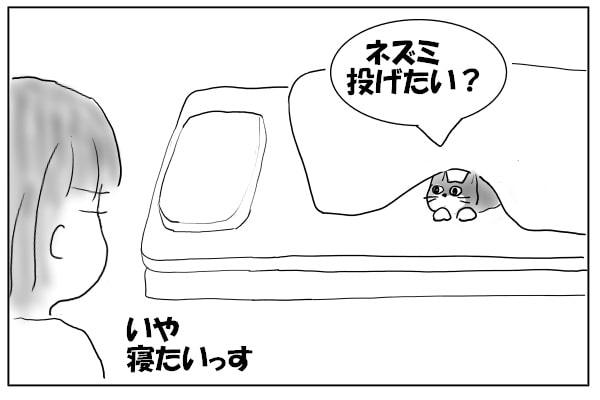 アピールする猫