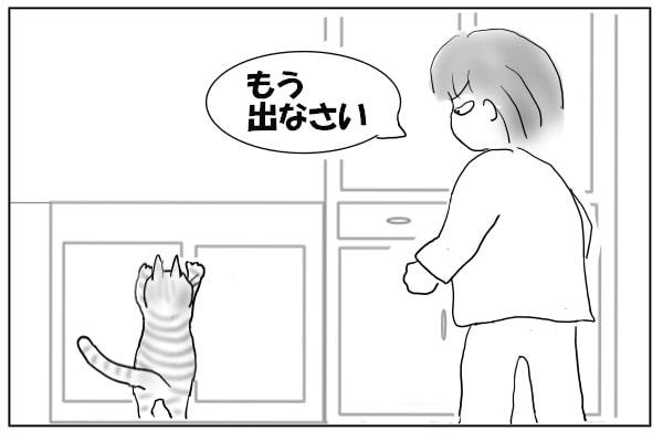 キッチンから猫を追い出す