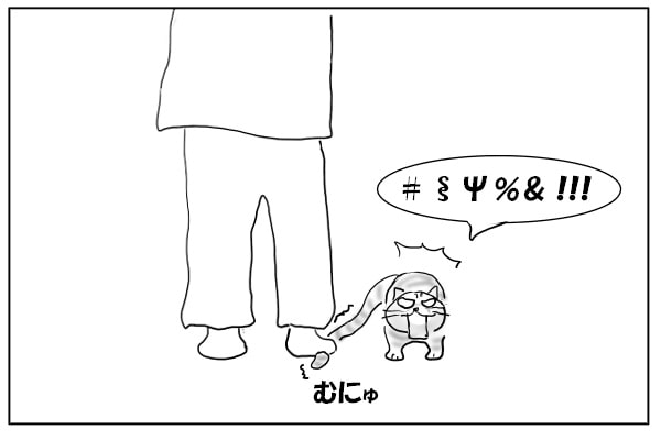 猫のシッポを踏む