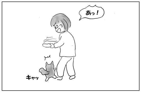 猫を蹴とばす