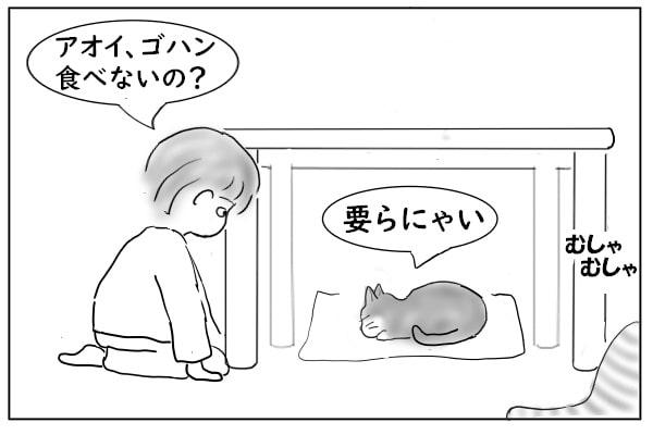 食欲のない猫