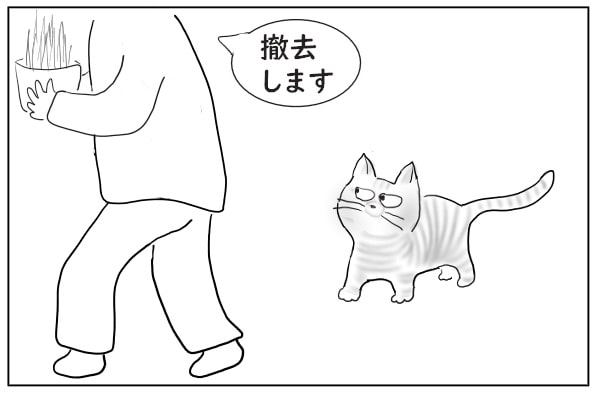 猫草を撤去する人