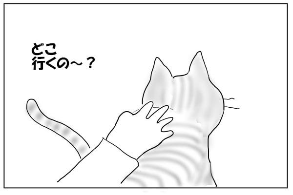 ゴキゲンの猫