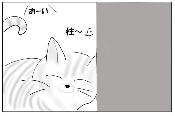 壁に顔をすりつける猫