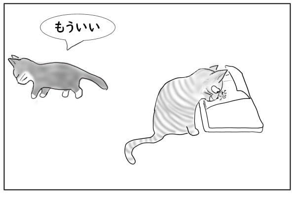 あきらめる猫