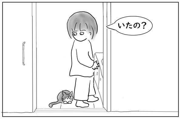 猫に気づく