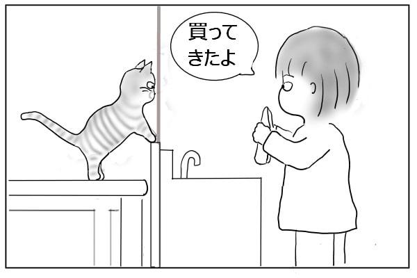 猫に豆苗を見せた