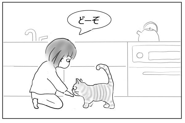 豆苗を猫にあげる人