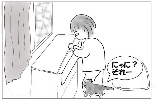 音を聞きつけた猫