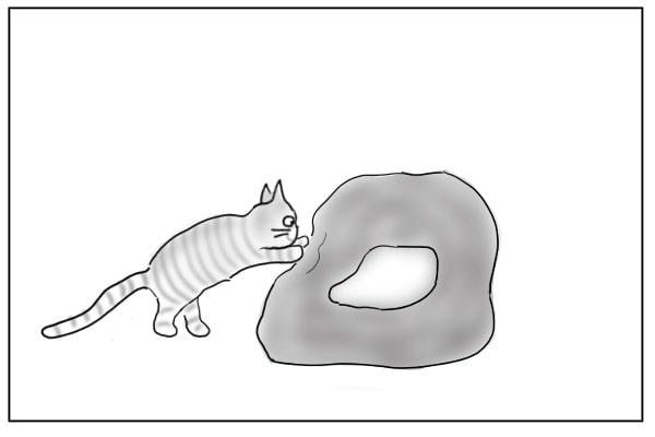 手をかけた猫