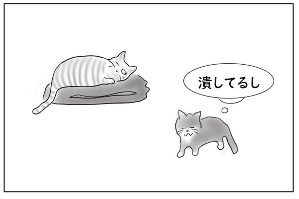 しょんぼりする猫