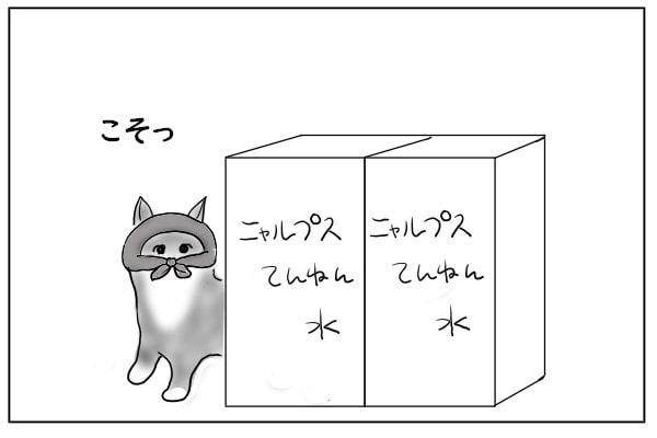 顔を出した猫