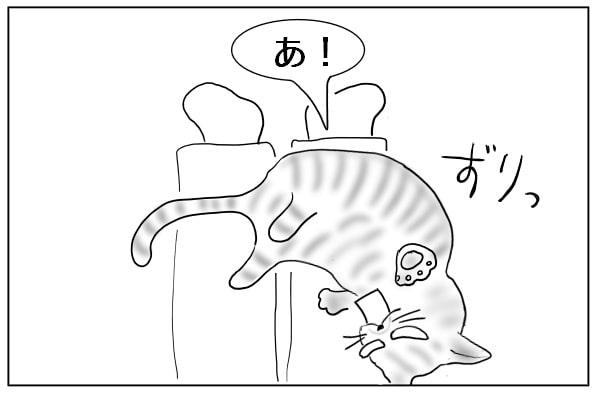 ずり落ちた猫