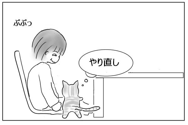 やり直す猫