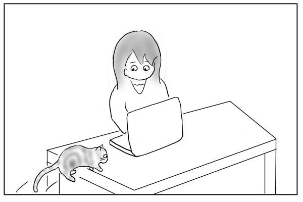 デスクに乗る猫