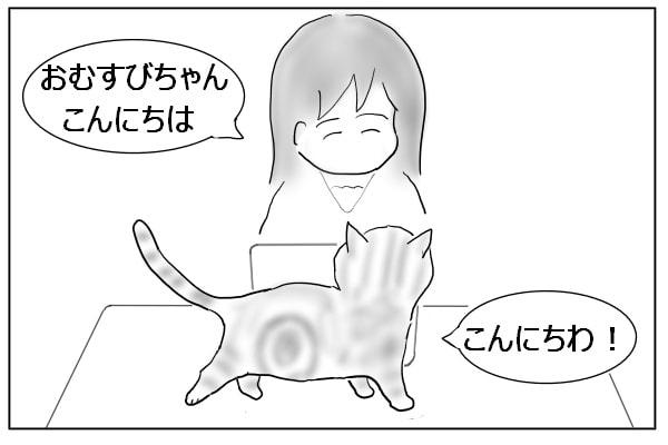 コーディネーターと猫のあいさつ