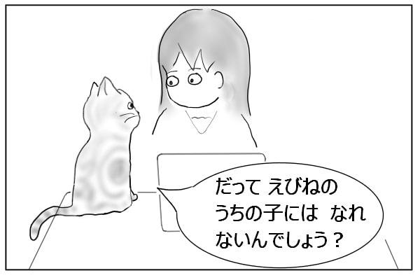 確認する猫