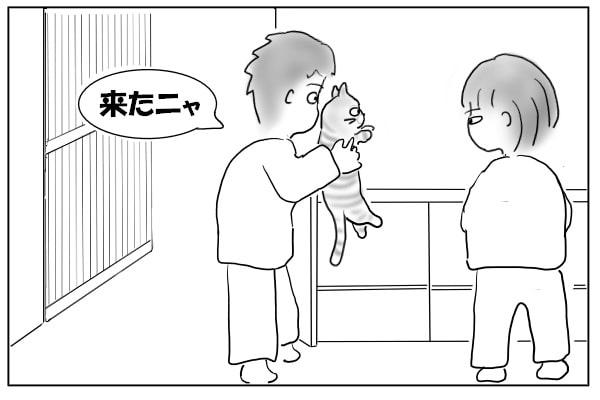 猫を差し向ける夫