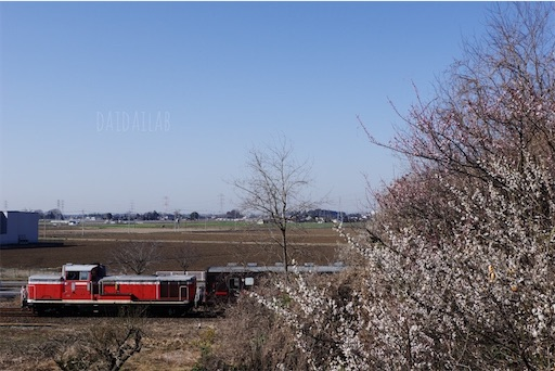 f:id:daidaihisashi:20200225131608j:image