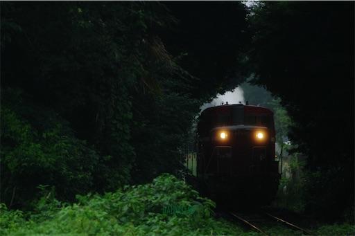 f:id:daidaihisashi:20200719080017j:image