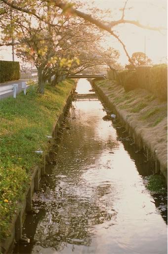 f:id:daidaihisashi:20210421150301j:image