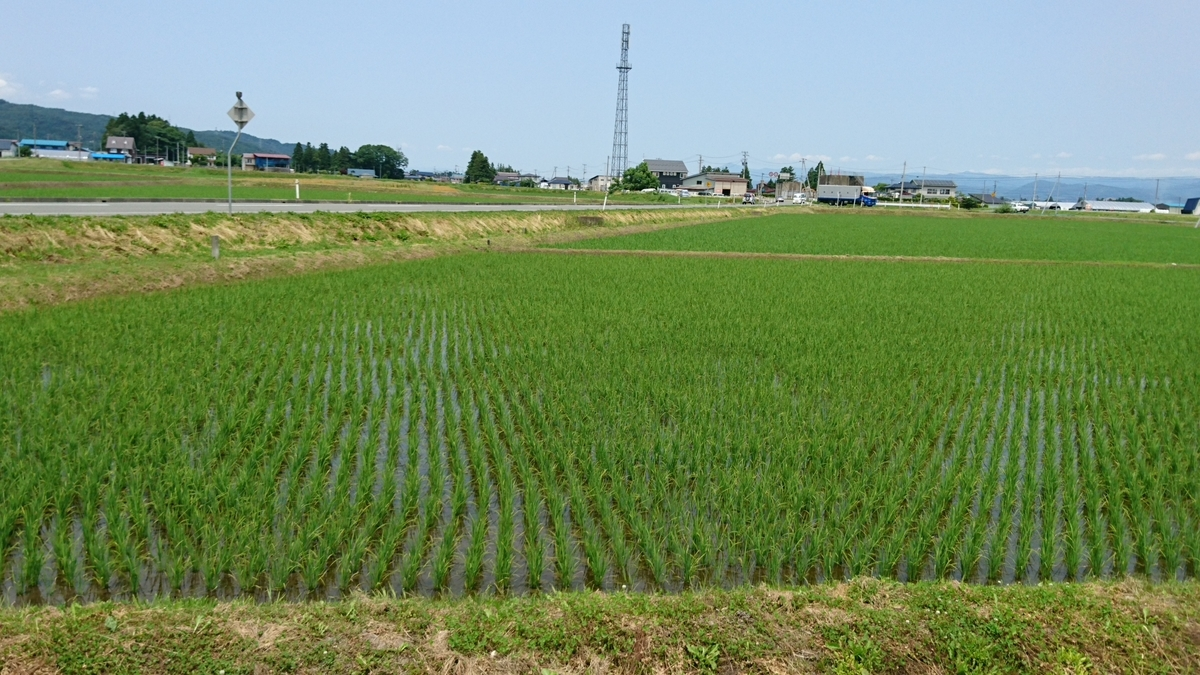 f:id:daifuku-siwa-hanamaki:20200612140840j:plain