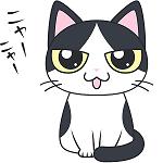 f:id:daifuku_chan:20191215220231p:plain