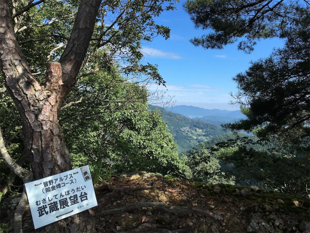 f:id:daifukupon:20161002104726j:image