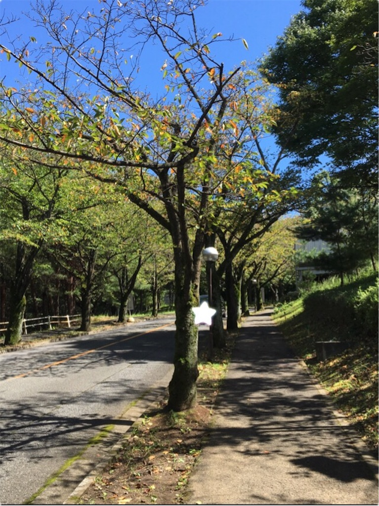 f:id:daifukupon:20170918200126j:image