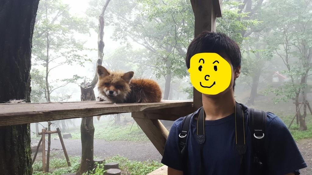 f:id:daigakukabuu:20170826010714j:plain